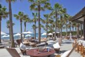 Nikki Beach. Strand met palmen.